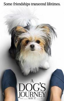 фильмы про собак все