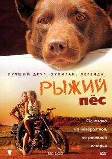 лучшие фильмы про собак для всей семьи