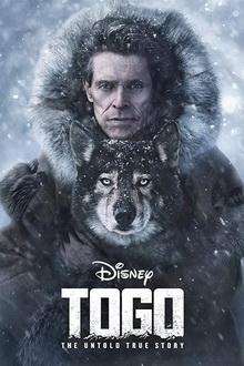 фильмы про собак для семейного просмотра