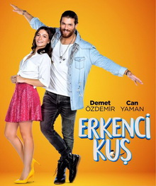 турецкие мини сериалы