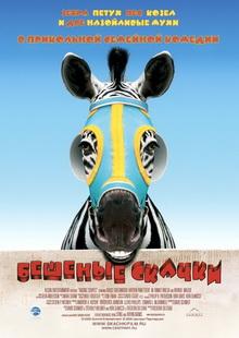 фильмы про конный спорт и лошадей