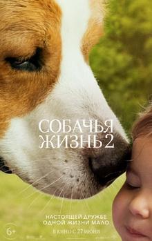 самые лучшие фильмы про животных